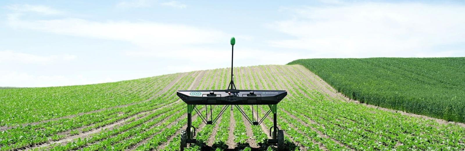 WeedElec – Agriculture Robotisée